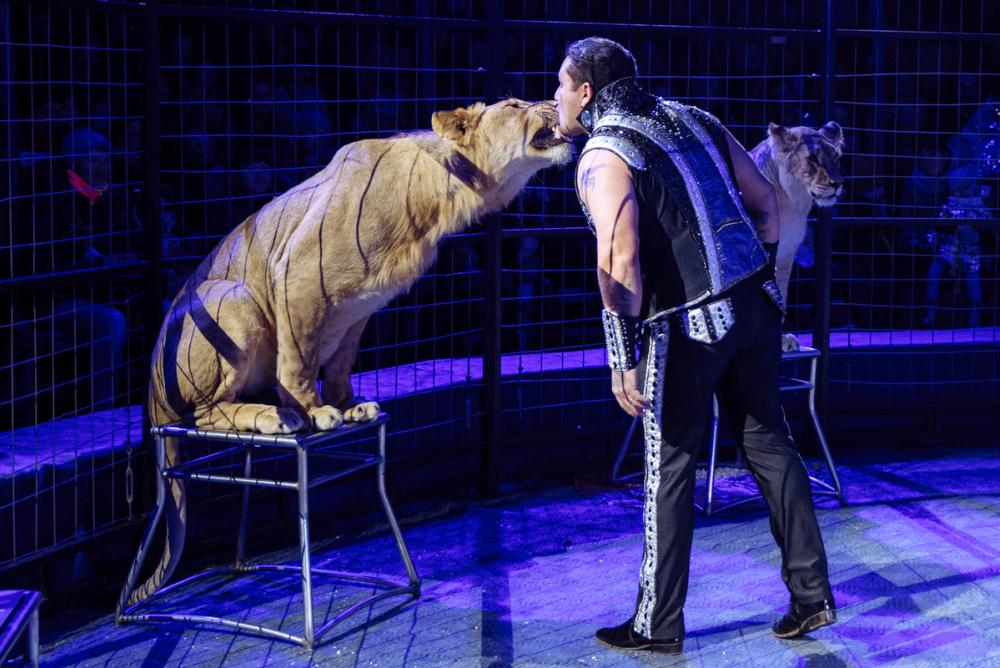 Цирк «Империал» - мир волшебства, экшена и номеров «на грани»