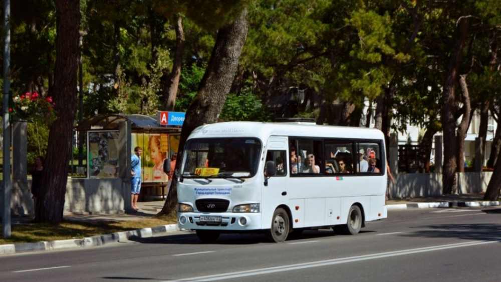 Движение общественного транспорта Геленджика не соответствует расписанию