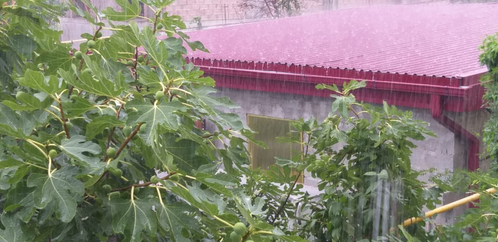 В Геленджике по прогнозу дождь