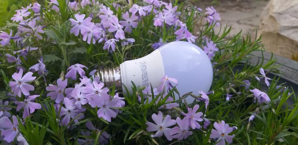 Утро без энергоснабжения придется провести некоторым жителям Геленджика