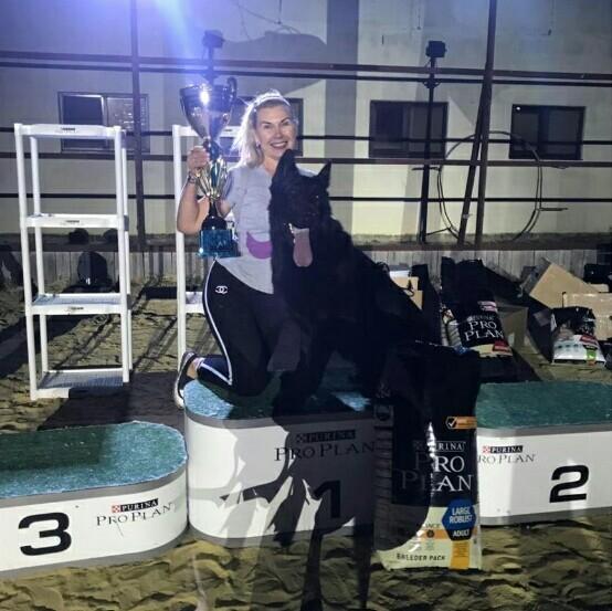 Геленджикский Адмирал завоевал звание «Чемпион Российской Кинологической Федерации»
