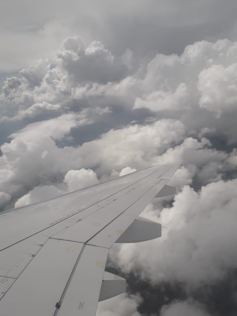 В Геленджик стали больше летать
