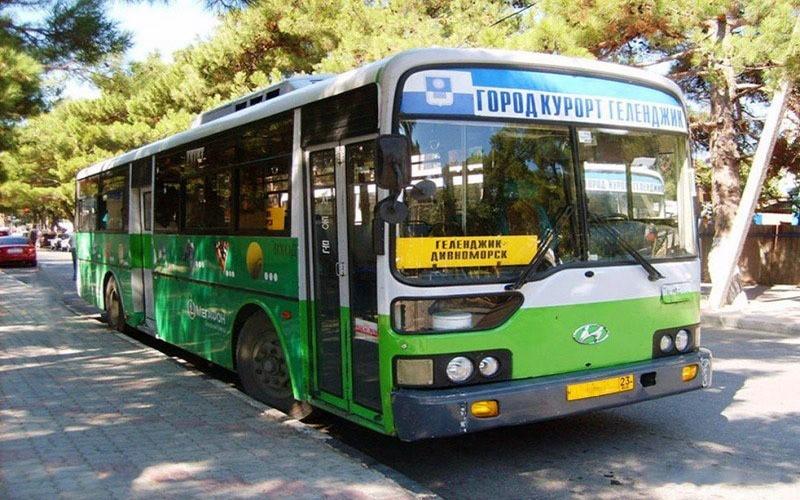 В Геленджике сотрудники ГИБДД проверят автобусы